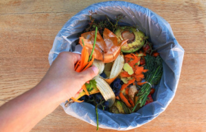 How to Dispose of organic Waste